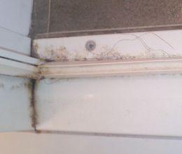 浴室の扉の下に汚れやカビが溜まっています